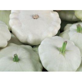 Белая семена патиссона (Украина) НЕТ ТОВАРА