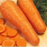 Шантане семена моркови (Euroseed)