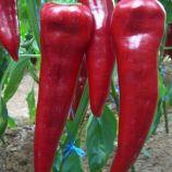 Армагеддон F1 семена перца сладкого (Yuksel)