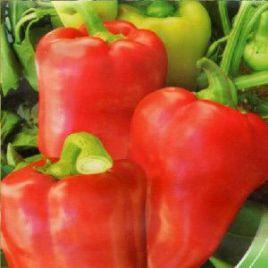 Хан Гирей F1 семена перца сладкого тип Венгерский раннего 95-110 дн. конич. 150г. желт./красн. (Элитный ряд)