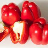 Прокрафт F1 семена перца сладкого среднеранний (Enza Zaden)
