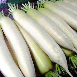 Миновазе семена редьки дайкон средней 70 дн. (Chrestensen)