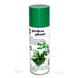 Блеск для комнатных растений (ДСГ)