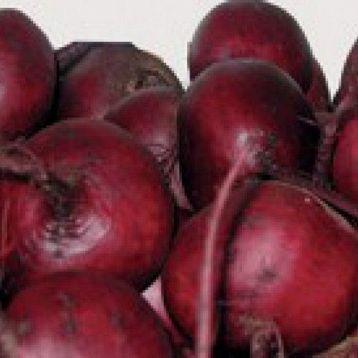 Шот Топ семена свеклы столовой (Hazera)