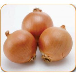 Муза F1 семена лука репчатого раннего 100-105 дн. (Cora Seeds)