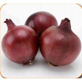 Фиама F1 семена лука репчатого среднего 118-122 дн. (Cora Seeds)