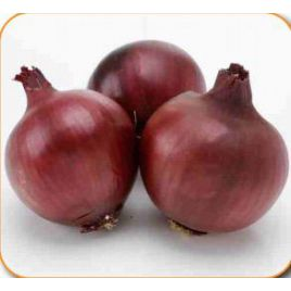 Фиама F1 семена лука репчатого красного среднего 118-122 дн. (Cora Seeds)