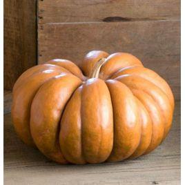 Мускат де Прованс RS семена тыквы мускатной средней 110-115 дн 5-8 кг (Rem seeds СДБ)