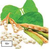 Карнелино семена фасоли овощной (Anseme)