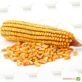 Достаток F1 семен кукурузы кормовой (Мнагор) НЕТ ТОВАРА