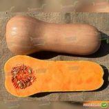 Атлас F1 семена тыквы мускатной (Sakata)
