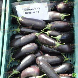 Бриджит F1 семена баклажана среднераннего 95-100 дн. 350-450 гр. 18-22 см удл.цил. (Rijk Zwaan)