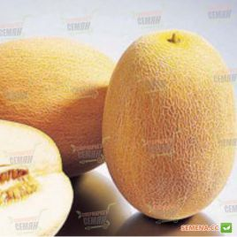 Виктория F1 (INX 1009) семена дыни ранней 55-70 дн. 1,5-2 кг овал. (Innova Seeds)