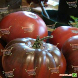 Бронсон F1 семена томата индет. ярко-корич. 200 гр. (Clause)