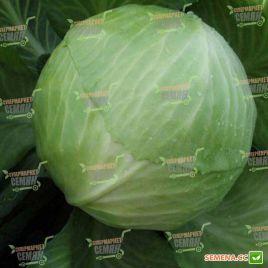 Декурион F1 семена капусты б/к среднепоздней (Clause)