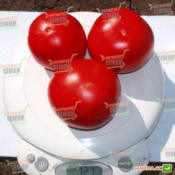 Есмеральда F1 насіння томата дет. (Clause)