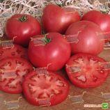 Фенда F1 семена томата индет. розового (Clause)