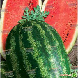 Каролина F1 семена арбуза тип Кримсон Свит среднеспелого 65-69 дн 12-16 кг (Clause)