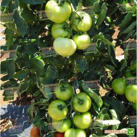 Кристал F1 семена томата индет. раннего окр. 140г (Clause)