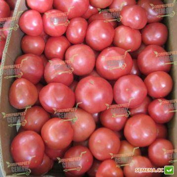 Ханни Мун F1 семена томата индет. розового (Clause)