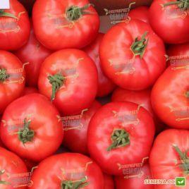 Афен F1 семена томата индет. раннего 105-115 дн. окр.-прип. 200-220г роз. (Tezier/Clause)