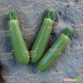 Мостра F1 семена кабачка раннего 30-35 дн. светло-зеленого (Tezier/Clause)