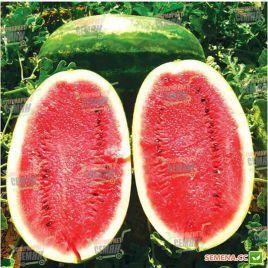 Нельсон F1 семена арбуза тип Кримсон Свит (Tezier)