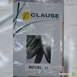 Роял F1 семена огурца пчел. раннего 48-50 дн. кор. (Clause)