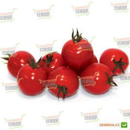 Конори F1 семена томата дет. черри раннего 90-95 дн. окр. 15-20 гр. (Kitano Seeds)