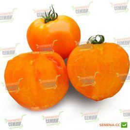 Айсан F1 (KS 18 F1) семена томата дет. среднепозднего окр. оранжевого 220-250г (Kitano Seeds)