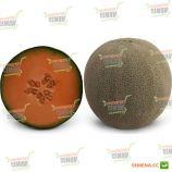 КС 7084 (KS 7084) F1 семена дыни тип Japanese средней 75-80 дн. 1,5-2 кг окр. сер.-зел./оран. (Kitano Seeds)