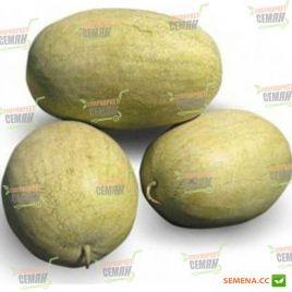 КС 9944 (KS 9944) F1 семена арбуза тип Чарльстон Грей раннего 8-10 кг (Kitano Seeds) НЕТ ТОВАРА