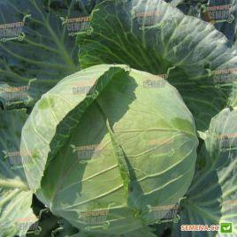 Наоми F1 семена капусты б/к средней 80-85 дн. 2,5-3,5 кг окр-прип. (Kitano Seeds)