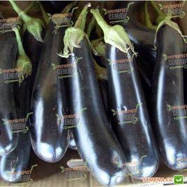 Самурай F1 семена баклажана раннего 180-200 гр. 20-25 см удл.-цил. (Kitano Seeds) НЕТ ТОВАРА