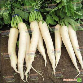 Титан дайкон семена редьки 45-50 дн. (Kitano Seeds)