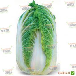 Зена F1 семена капусты пекинской ранней (Kitano Seeds) СНЯТО С ПРОИЗВОДСТВА