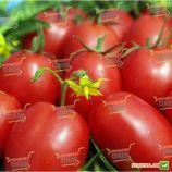 1509 F1 семена томата дет. среднеран. слив. 110-130 гр. (Lark Seeds)