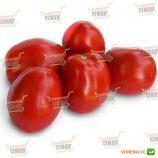1510 F1 семена томата дет. раннего слив. 160-180 гр. (Lark Seeds)