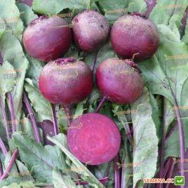 Детройт Дарк Ред семена свеклы столовой (Lark Seeds)