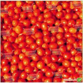 Френзи F1 семена томата дет. черри раннего 100 дн. слив. 25-30 гр. (Lark Seeds)