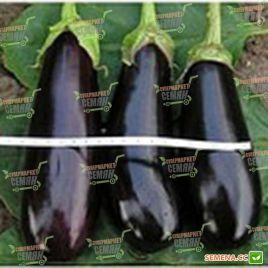 Идальго F1 семена баклажана раннего 60-70 дн. 25 см удл.-цил. (Lark Seeds)