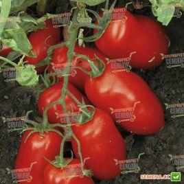 Харди F1 семена томата дет. (Lark Seeds)