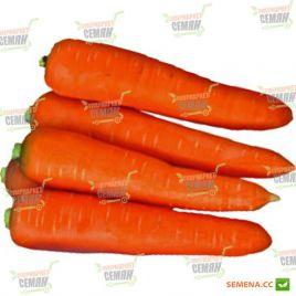 Курода семена моркови (Lark Seeds)