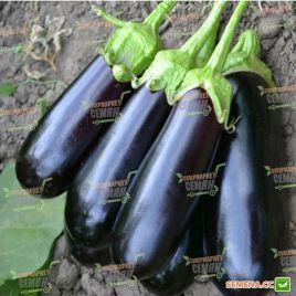 Миринда F1 семена баклажана тип Алмаз раннего 85-95 дн. 250-300 гр. 25 см овал.-цил. (Lark Seeds)