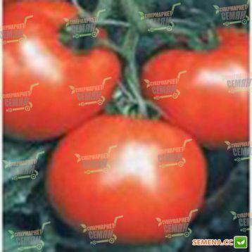 Мобил семена томата дет. (Lark Seeds)