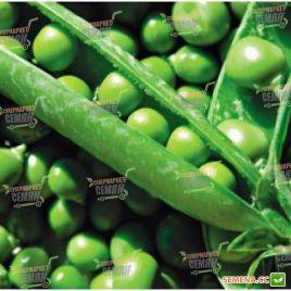Тиара семена гороха овощного (Lark Seeds)