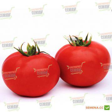 Даруна F1 семена томата дет. среднераннего 115 дн. окр. 130-150г красный (Lucky Seed)