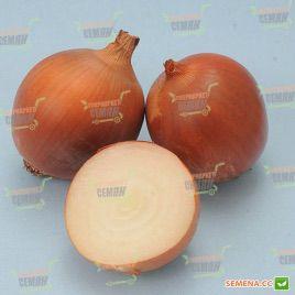 Форум семена лука репчатого средней 110-120дн 100-170гр (Lucky Seed)