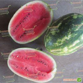 ЛС 1667 F1 (LS 1667 F1) семена арбуза тип Кримсон Свит раннего 8-12 кг овал. (Lucky Seed)