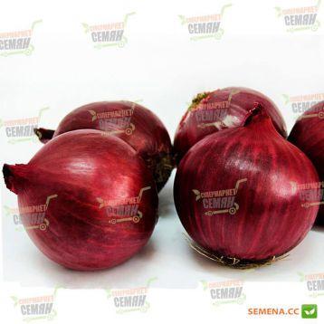 LS 5612 F1 семена лука репчатого красного (Lucky Seed)
